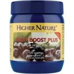 Fruit Boost Plus 225g Powder